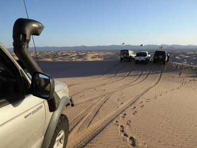 Tacoma and other vehicles in Imperial Sand Dunes
