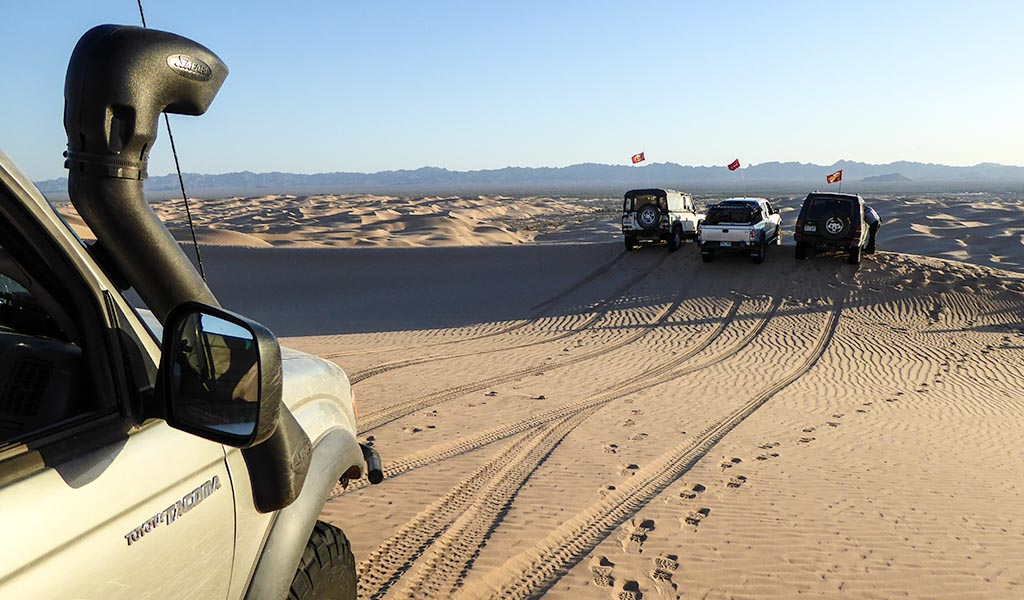 Tacoma in Imperial Sand Dunes